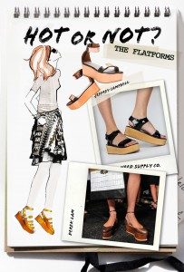 Hot or Not - The Flatforms